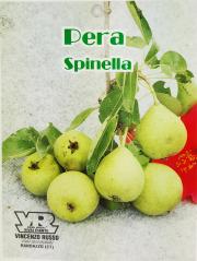 Pera Spinella